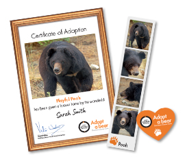 The items you receive for your adoption: certificate, photo strip, fridge magnet.